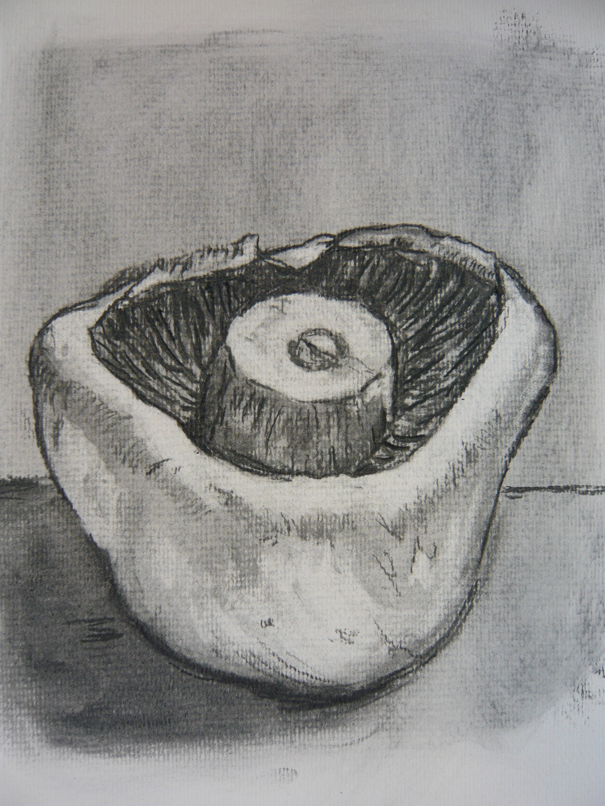 Charcoal Drawing and T...