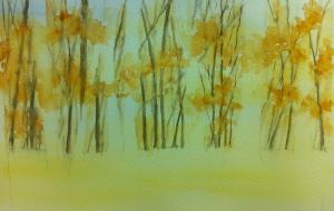 Woodland Scene (5)