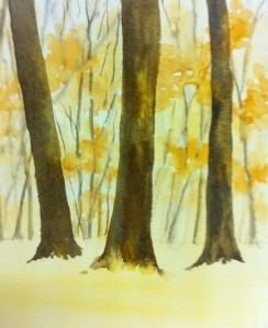 Woodland Scene (7)
