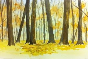 Woodland Scene (8)