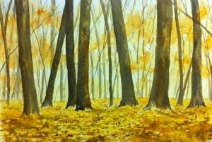 Woodland Scene (9)
