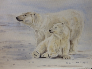 Polar Bears by Tessa Lewis