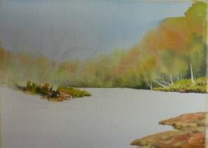 (3) Next I started to work on the forground  areas creating extra strengths of colour and marks.